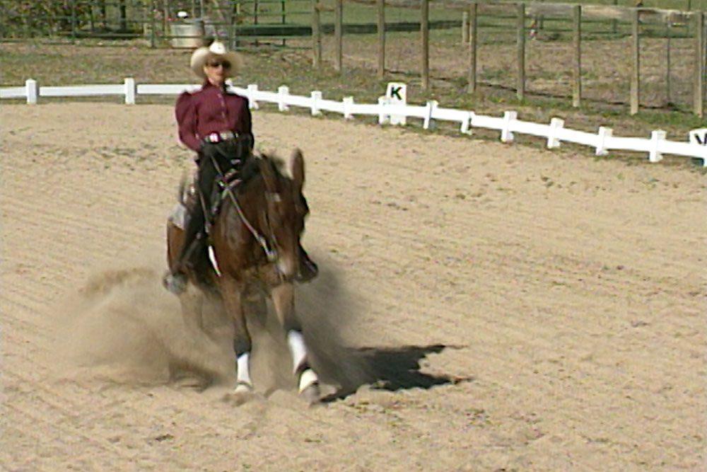 Stopping Under Saddle