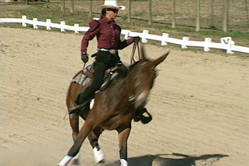 Teaching Your Equine to Spin